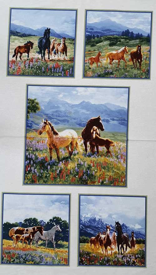 Horses 5 Blocks