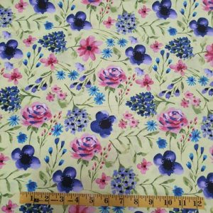 Marguerite flowers blue pink
