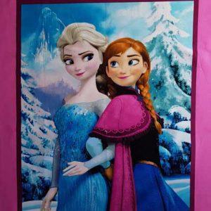 Frozen Scenic Panel