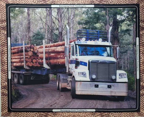 Road Train Forestry